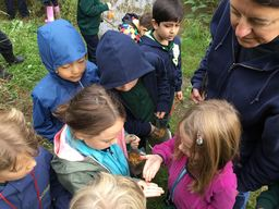 First Graders Hunt for Creatures in Their Natural Habitats